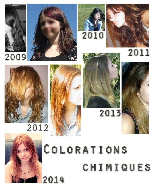 Evolution cheveux - colorations chimiques