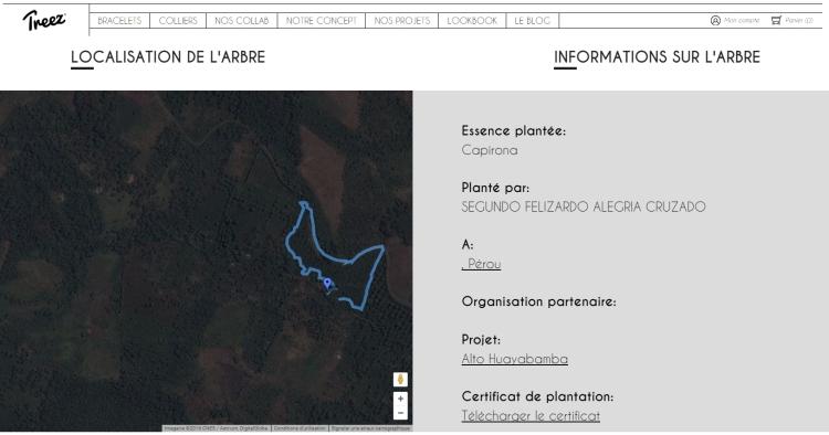 Site Treez.jpg